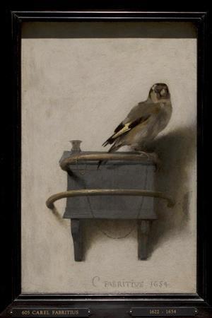 カレル・ファブリティウスの画像 p1_23