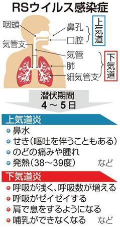Rs ウイルス 大人 RSウイルス感染症に大人が!?喉の痛みや頭痛の症状が出る?