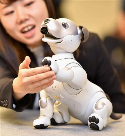 【JAPAN Forward】Sony 'aibo' Fetching Customers in New Age of Robot Companions